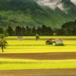 Posao u inostranstvu na poljoprivrednom imanju SVAJCARSKA – Plata 4800 franaka – SAMO OZBILJNE OSOBE!